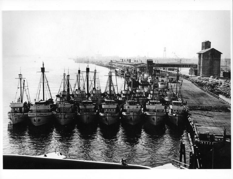 Gli approdi - Anni '50, il molo ischitano di San Pedro, California